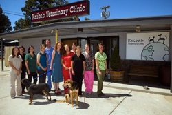 Kaibab Veterinary Clinic, vets near the Grand Canyon, Grand Canyon veterinarians, vets near Flagstaff