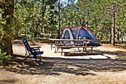 Grand Canyon Campgrounds, Grand Canyon dog friendly hotel, pet friendly hotel in Grand Canyon